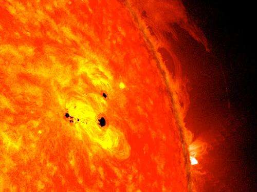 Image result for sun spots